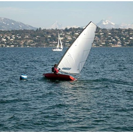 Mainsail COMPATIBLE New cat 12